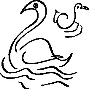swan4